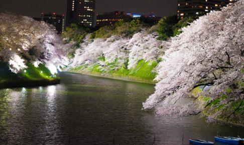 千鳥ヶ淵の桜2018ライトアップ