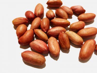 ピーナッツの皮に栄養