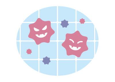 風呂 ピンク汚れの正体