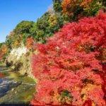 養老渓谷の紅葉2019の見頃やライトアップ!ハイキングコースは?